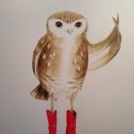 Sadly The Line Dancing Owl