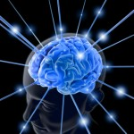 sharma-obesity-brain