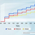 Diabetes Incidence during DPP