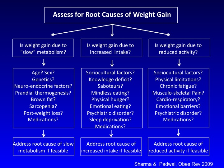 sharma-obesity-etiological-approach1
