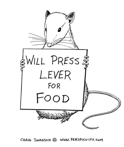 sharma-obesity-rat1